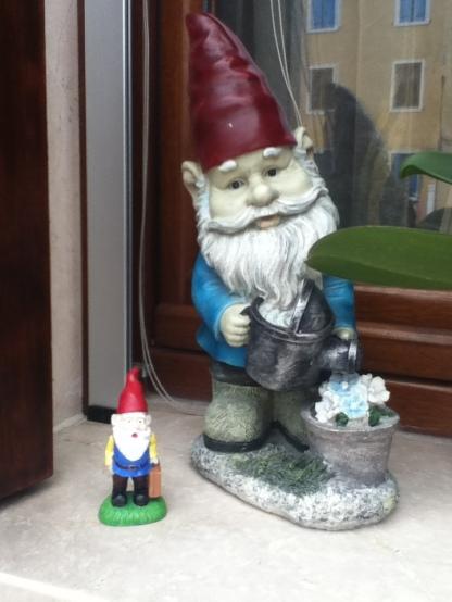 Gnomebert even found a friend
