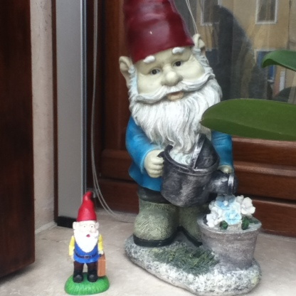 Gnomebert even found a friend